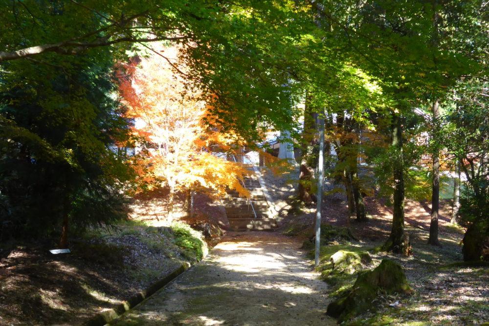 1118佐々神社