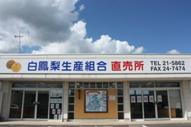 白鳳梨生産組合直売所