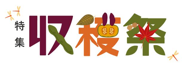 バナー_収穫祭