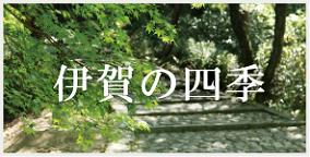 伊賀の四季