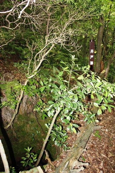 お茶屋の井戸跡
