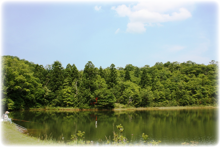 三本松の池