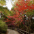 芭蕉の森公園