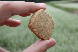 そば粉クッキー